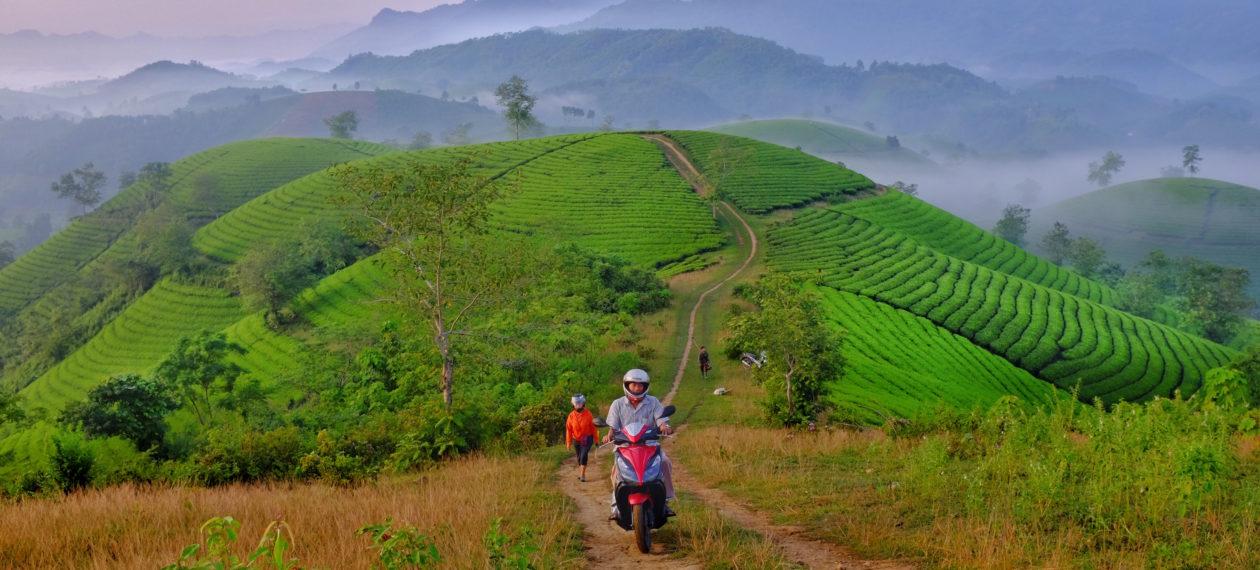 Vietnam's Domestic Tourism